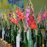 Gladiolu izstāde Krustpils novadā