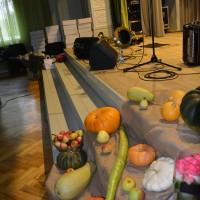 Krustpils novada pašdarbnieku svētki 2015