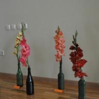 Gladiolu izstāde Krustpils novada pašvadībā